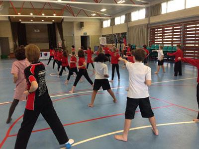 Students at Taekwondo Class